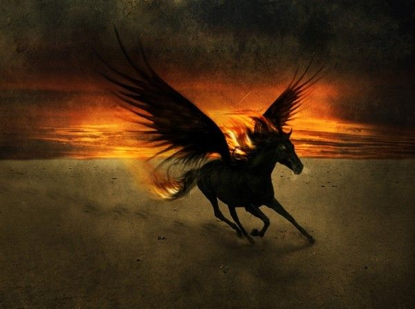 A cheval sur mon homme - 4 4