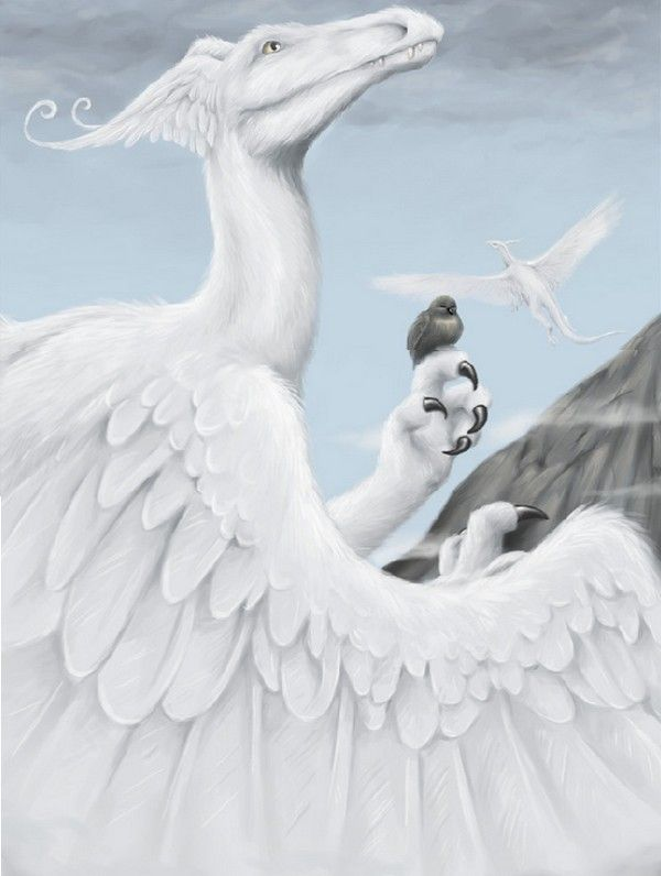 dragon blanc